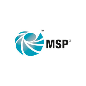 Why Businesses Should Use Msp Programme Management