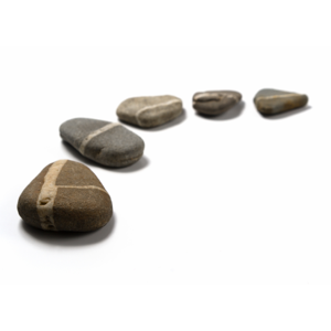 project stepping stone Stepping stones is now a program of centerstone stepping stones, inc stepping stones, inc | po box 1366 bloomington, in 47402.